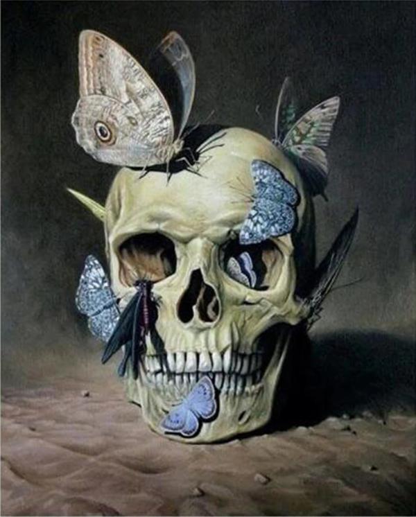skull vanitas () - Chris Jones